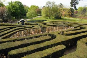 Maze Hampton Court Palace KidRated Reviews by kids and family offers Christmas London Walks Kidrated