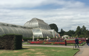 Palm house at Kew Gardens Kidrated 100 quirky things to do in london