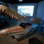 animatronic crocodile at bond in motion