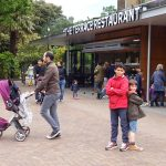 Terrace Restaurant London Zoo KidRated reviews and family offers