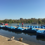 Hyde Park London KidRated reviews and family offers