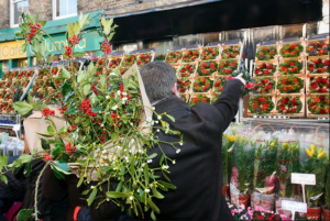 Columbia Road flower market christmas as featured in 50 things for teenagers to do in London