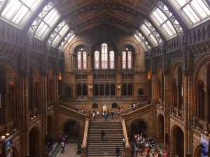 Natural History Museum Top 10 Things To Do In London On A Rainy Day Kidrated