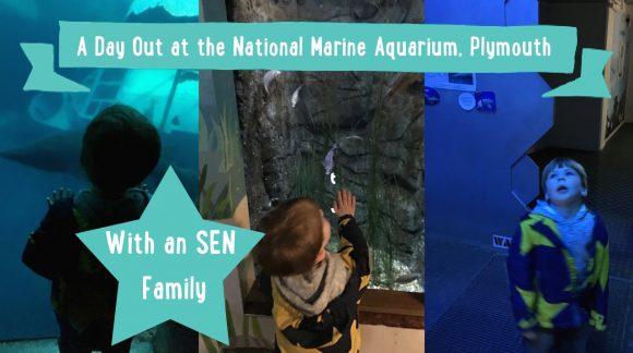 SEN FAMILY National Marine Aquarium