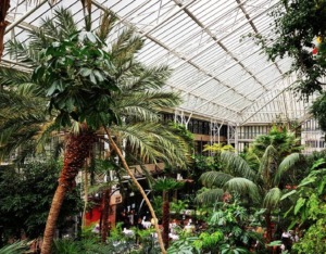 Barbican Conservatory Kidrated 100 quirky things to do in london