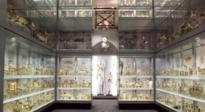 The Hunterian Museum Kidrated 100 quirky things to do in london