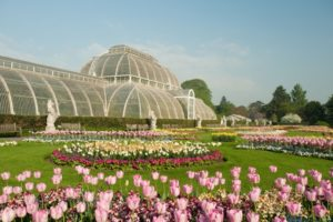 kew gardens palm house and tulips in spring an Kidrated Eleven Ways How To Travel The World In London