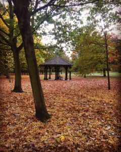 autumn in regents park london kidrated