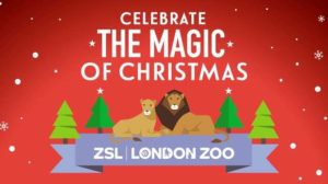 Magic of Christmas at London Zoo this December.