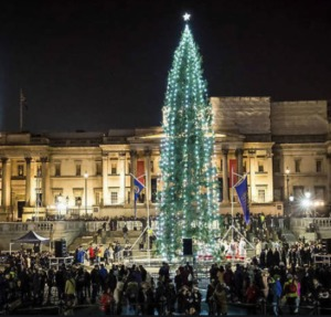 Christmas Tree In Trafalgar Square Kidrated 15 Things To Do At Christmas In London