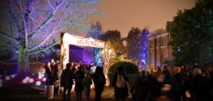 Dulwich Winter Lights Kidrated 15 Things To Do At Christmas In London
